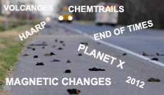 Bird deaths and the Doomsday scenario